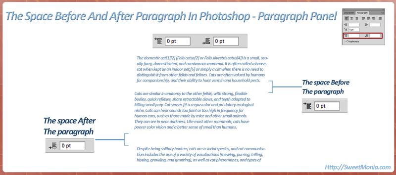 Paragraph-Space