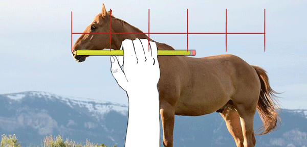 Rule-Of-Thumb-Horizontal-Proportions